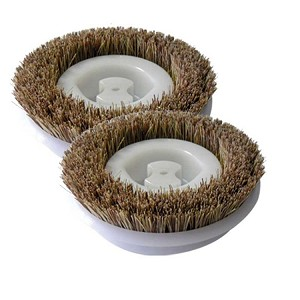 Scrubbing Brush 2 Pack For Regina Floor Scrubbers